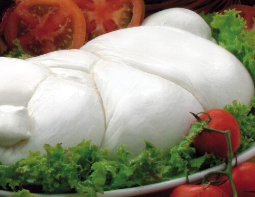 Cenni storici della Mozzarella di Bufala Campana Mondragone